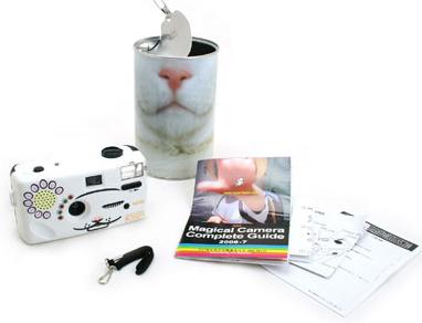 cat-camera4