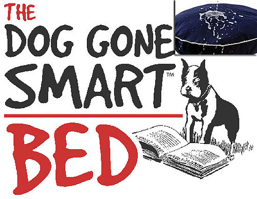 Out and About: Connecticut's Dog Gone Smart Bed