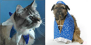 Pet Present Extravaganza: Hanukkah for Pets (Day 3)