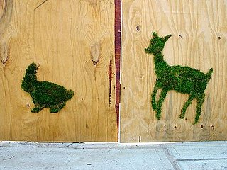 Cool Idea:  Green Graffiti