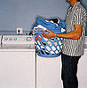 Pet-Proofing Your Home: Laundry