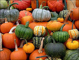 What&#039;s your favorite Pumpkin?