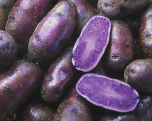 Spacey Purple Potatoes:  Cosmic or Cuckoo?