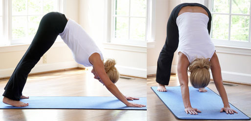Get Your Butt in Gear: YoginiStyle YogaSmart Pants