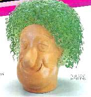 Product of the Day: Chia Head