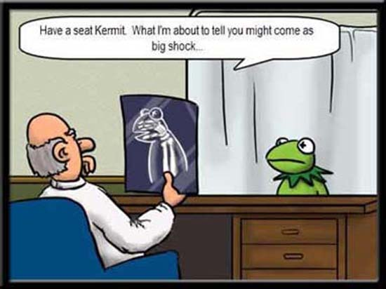 Kermit Gets the News of His Life