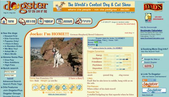 Website Of The Day: Dogster Is The New Friendster